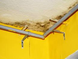 schimmelbefall noch vor beginn der heizperiode sanieren. Black Bedroom Furniture Sets. Home Design Ideas
