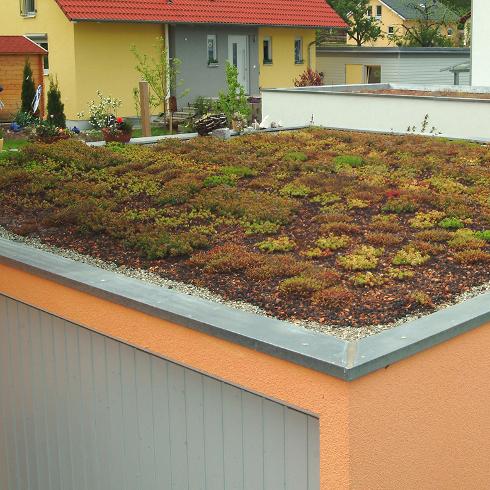 dachbegr nung mit system f r ein rundum nachhaltiges dach. Black Bedroom Furniture Sets. Home Design Ideas