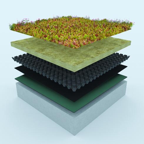 dachbegr nung wertet flachdach auf energie fachberater. Black Bedroom Furniture Sets. Home Design Ideas