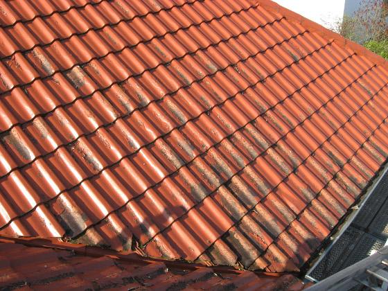 Gut bekannt Ist eine Dachbeschichtung sinnvoll? - ENERGIE-FACHBERATER EI63