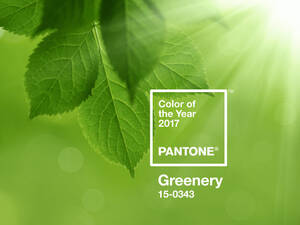 Greenery - Farbe des Jahres 2017
